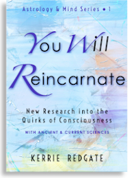 'You Will Reincarnate' book cover